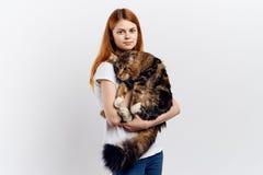 Η νέα όμορφη γυναίκα απομονωμένο στο λευκό υπόβαθρο κρατά μια γάτα, κατοικίδια ζώα, ζώα Στοκ φωτογραφία με δικαίωμα ελεύθερης χρήσης