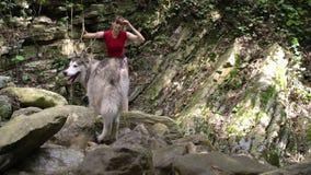 Η νέα όμορφη ξυπόλυτη γυναίκα με το σκυλί malamute περπατά στο ξύλο βουνών στον ποταμό φιλμ μικρού μήκους