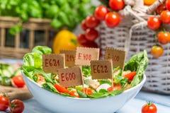 Η Νίκαια που φαίνεται τρόφιμα μπορεί να έχει τα συντηρητικά Στοκ Φωτογραφία