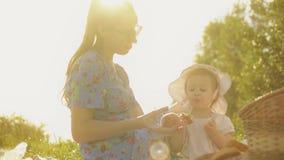 Η νεαρή γυναίκα και το κοριτσάκι της κάνουν πικ-νικ σε μια όμορφη καλοκαιρινή ημέρα απόθεμα βίντεο