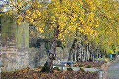 Η νεκρόπολη της Γλασκώβης, βικτοριανό γοτθικό νεκροταφείο, Σκωτία, UK Στοκ Φωτογραφία