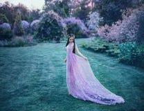 Η νεράιδα περπατά στο θερινό κήπο Στοκ Εικόνες