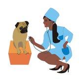 Η νοσοκόμα θεραπεύει ένα σκυλί ελεύθερη απεικόνιση δικαιώματος