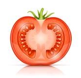Η ντομάτα μισό--μισός απεικόνιση αποθεμάτων