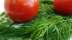 Η ντομάτα ρίχνει το υγρό μάραθο σε αργή κίνηση φιλμ μικρού μήκους