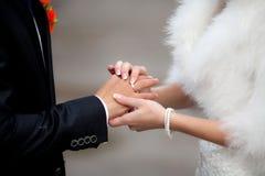 Η νύφη έβαλε το γαμήλιο δαχτυλίδι στο νεόνυμφο Στοκ Εικόνα
