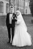 Η νύφη και ο νεόνυμφος αγκαλιάζουν σε έναν περίπατο στην επαρχία για έναν περίπατο Στοκ φωτογραφία με δικαίωμα ελεύθερης χρήσης