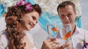 Η νύφη και ο νεόνυμφος κρατούν τα κύπελλα με δύο κολυμπώντας ψάρια, ένας κλόουν Γαμήλια ιδέα Το σύμβολο του ζευγαριού παραλία εξω απόθεμα βίντεο