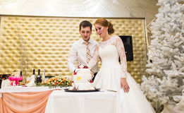 Η νύφη και ο νεόνυμφος κόβουν ένα γαμήλιο κέικ, χριστουγεννιάτικο δέντρο στο υπόβαθρο στοκ εικόνα