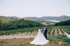 Η νύφη και ο νεόνυμφος μετά από την τελετή περπατούν στη φύση Μια φωτογραφία του α το ζεύγος στο υπόβαθρο των λόφων, ένας ποταμός Στοκ φωτογραφία με δικαίωμα ελεύθερης χρήσης