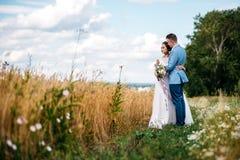 Η νύφη και ο νεόνυμφος στέκονται στον τομέα Στοκ Εικόνα