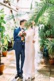 Η νύφη κρατά το φύλλο φοινίκων για να κλείσει το φιλί με το νεόνυμφο Θέση θερμοκηπίων Στοκ φωτογραφία με δικαίωμα ελεύθερης χρήσης