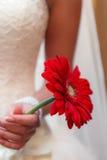 Η νύφη με μια ανθοδέσμη των λουλουδιών Στοκ εικόνες με δικαίωμα ελεύθερης χρήσης