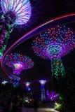 Η νύχτα πυροβόλησε τους κήπους από τα supertrees κόλπων, η Σιγκαπούρη κατά τη διάρκεια καθημερινού του ελαφριού παρουσιάζει στοκ εικόνες
