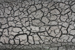 Η ξηρά λάσπη Στοκ Φωτογραφίες