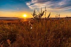 Η ξηρά αλατισμένη λίμνη Στοκ φωτογραφίες με δικαίωμα ελεύθερης χρήσης