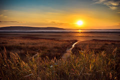 Η ξηρά αλατισμένη λίμνη Στοκ Φωτογραφίες