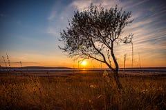 Η ξηρά αλατισμένη λίμνη Στοκ φωτογραφία με δικαίωμα ελεύθερης χρήσης