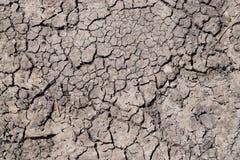 Η ξηρασία, η γη ράγισε λόγω της ξηρασίας, ξηρά χλόη στο έδαφος στοκ εικόνες