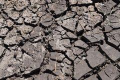 Η ξηρασία, η γη ράγισε λόγω της ξηρασίας, ξηρά χλόη στο έδαφος στοκ φωτογραφίες με δικαίωμα ελεύθερης χρήσης