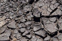 Η ξηρασία, η γη ράγισε λόγω της ξηρασίας, ξηρά χλόη στο έδαφος στοκ φωτογραφία με δικαίωμα ελεύθερης χρήσης