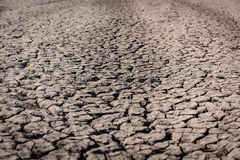 Η ξηρασία, ξηρά γη, θλίψη, στέγνωσε το νερό στοκ εικόνες