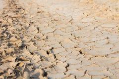 Η ξηρασία, παγκόσμια αύξηση της θερμοκρασίας λόγω του φαινομένου του θερμοκηπίου, περιβάλλον αλλάζει ξαφνικά στοκ φωτογραφία