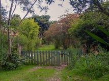 Η ξύλινη αγροτική πύλη από την πολύβλαστη βλάστηση στοκ φωτογραφία με δικαίωμα ελεύθερης χρήσης