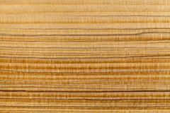 Η ξύλινη σύσταση ενός τεμαχισμένου κούτσουρου πεύκων Στοκ εικόνες με δικαίωμα ελεύθερης χρήσης