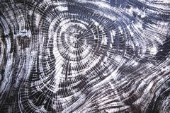 Η ξύλινη σύσταση μπορεί να χρησιμοποιηθεί ως υπόβαθρο Στοκ Εικόνα