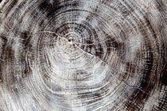 Η ξύλινη σύσταση μπορεί να χρησιμοποιηθεί ως υπόβαθρο Στοκ Φωτογραφίες