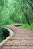 Η ξύλινη γέφυρα στοκ φωτογραφία
