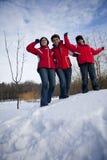 Η οικογένεια έχει τη διασκέδαση στο χιόνι Στοκ Φωτογραφία