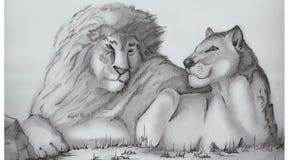 Η οικογένεια λιονταριών λευκό δέντρων μολυβιών σχεδίων ανασκόπησης Στοκ Φωτογραφίες