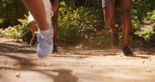 Η οικογένεια τρέχει μαζί σε ένα πάρκο απόθεμα βίντεο