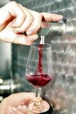 Η δοκιμή κρασιού στην παραγωγή χύνει το κρασί με τη δεξαμενή το κρασί Στοκ εικόνα με δικαίωμα ελεύθερης χρήσης