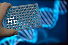 Η δοκιμή DNA Στοκ φωτογραφία με δικαίωμα ελεύθερης χρήσης