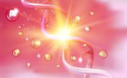 Η δοκιμή DNA διανυσματική απεικόνιση