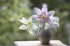 Η ομάδα ελαφριών άσπρων και ρόδινων κρίνων στο βάζο, όμορφο άνθισμα ανθίζει στο εσωτερικό στο παράθυρο στοκ εικόνες