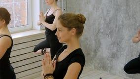 Η ομάδα νέου δέντρου γιόγκας άσκησης γυναικών θέτει, Vrikshasana στη λέσχη υγείας Στοκ Φωτογραφία