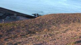Η ομάδα οδόβαινων στηρίζεται στο νερό του αρκτικού ωκεανού στη νέα γη στη Ρωσία φιλμ μικρού μήκους