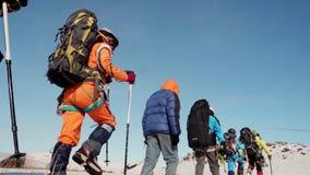 Η ομάδα ορειβατών περνά αργά από το χιόνι, με τα σακίδια πλάτης πίσω από την πλάτη Ταξίδι στη χιονισμένη έκταση και απόθεμα βίντεο