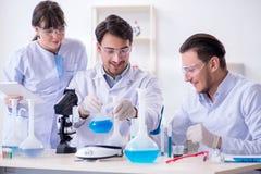 Η ομάδα των φαρμακοποιών που εργάζονται στο εργαστήριο Στοκ εικόνα με δικαίωμα ελεύθερης χρήσης
