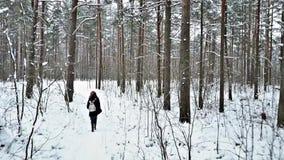 Η ομάδα νέων περπατά κατά μήκος του δασικού ίχνους ` s τη νεφελώδη χειμερινή ημέρα απόθεμα βίντεο