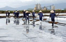 Η ομάδα saltworker φέρνει το άλας στην αλυκή. BA RIA,  Στοκ Εικόνα