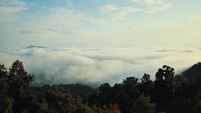 Η ομίχλη κυλά μέσω της κοιλάδας των μεγάλων βουνών Smokey στη βόρεια Καρολίνα απόθεμα βίντεο