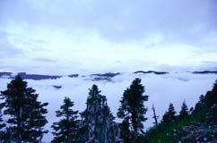 Η ομίχλη του νομαρχιακού διαμερίσματος Nyingchi στο Θιβέτ Στοκ φωτογραφία με δικαίωμα ελεύθερης χρήσης