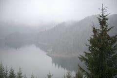 Η ομίχλη Στοκ εικόνες με δικαίωμα ελεύθερης χρήσης