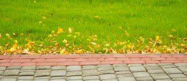 Η ομορφιά του φθινοπώρου Στοκ Φωτογραφία