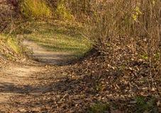 Η ομορφιά του φθινοπώρου Στοκ εικόνες με δικαίωμα ελεύθερης χρήσης